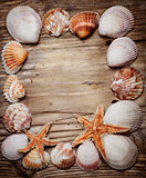 Seashell Frame