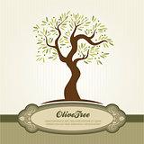 Vintage olive vector