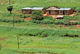 Rural settlement