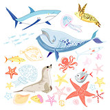 graphic marine animals