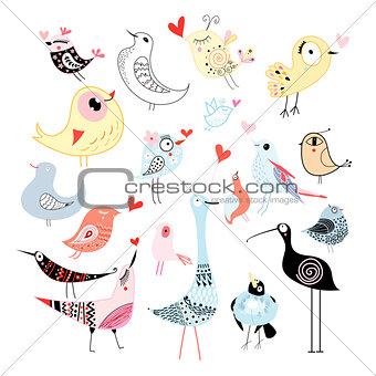 Beautiful graphics birds