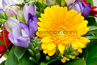 Colorful flowers bouquet isolated on white background.