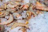 Fresh shrimps on ice