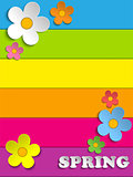 Beautiful Spring Flowers Rainbow Background