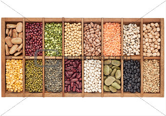 set of 16 legume samples