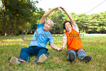 happy Senior couple do physical training in the park