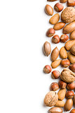 border of various nuts on white background