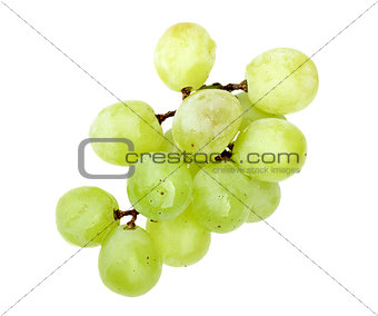 Small branch of fresh green grape