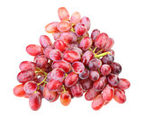 Branch of fresh red grape