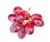 Small branch of fresh red grape