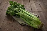 Shrub celery