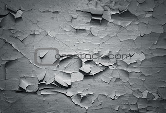 Grey grunge textured wall