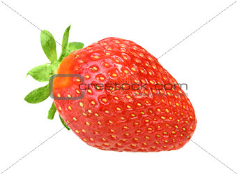 One red berry fresh strawberry