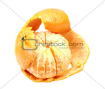 One fruit of orange tangerine with skin