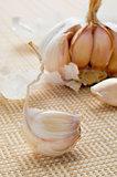 head of garlics