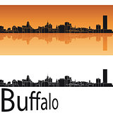 Buffalo skyline