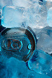 Can in ice