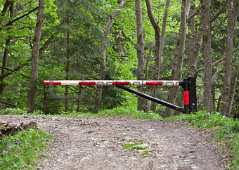 Barrier, blocking the road into the woods