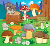 Mushroom theme image 4