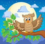 Owl theme image 1