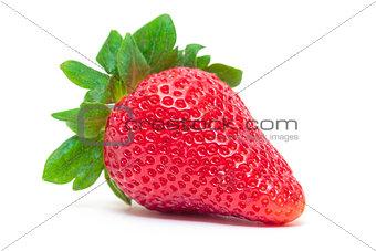 Ripe Berry Red Strawberry