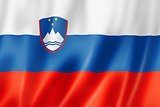 Slovenian flag