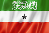 Somaliland flag