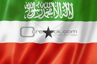 Somaliland flag