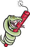 Rattle Snake Coiling Dynamite Cartoon