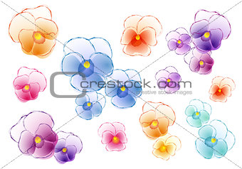 colorful pansies, vector set