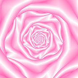 Pale Pink Spiral Rose