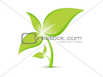abstract eco plant template