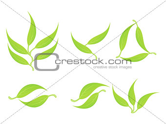 abstract multiple green eco leaf