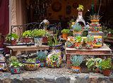 Outdoor Shop of Decorative Pots and Succulents