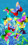Colorful illustration of butterflies
