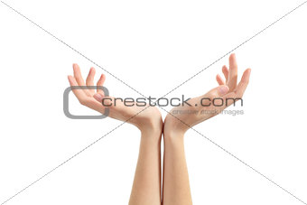 Hands of a woman with palms up