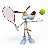 Dog tennis player.