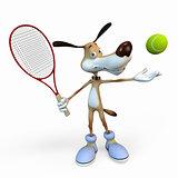 Dog tennis player.