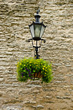 Estonia -Tallinn Old Town - Street Lighting And Floral Decoration