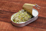 broccoli sprouts in can