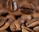 falling coffee beans macro