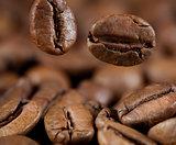falling coffee beans macro