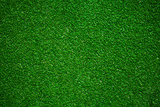 miniature golf field background
