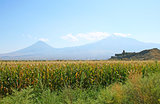 Khor Virap Church and mountain Ararat