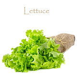 Lettuce.