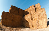 Warehouse hay on a farm.