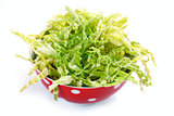 salad with fresh savoy cabbage on white background