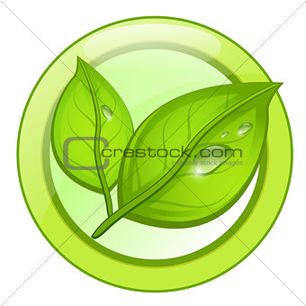 Green eco leaf logo with water drops