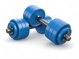 Iron dumbbells weights
