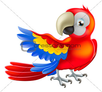 Red macaw parrot illustration